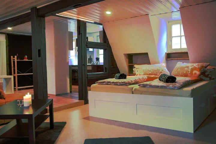 Gemütliche Maisonette Wohnung im Herzen Bambergs