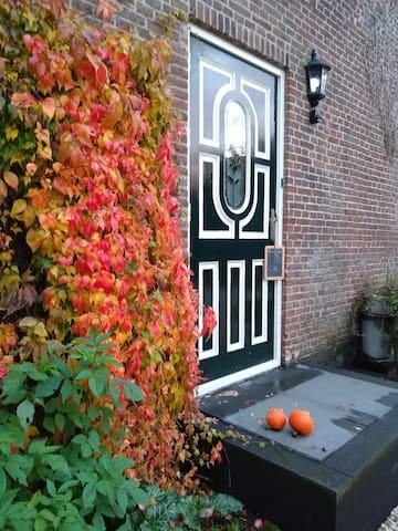 Mooie herfst kleuren.