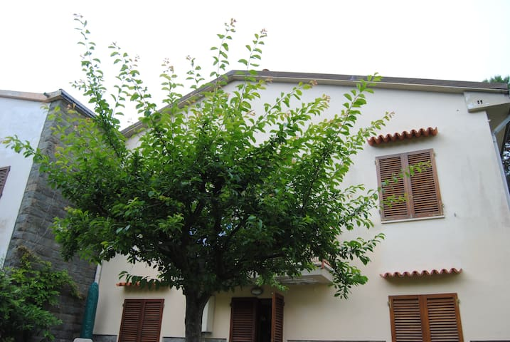 Il SUSINO - Marina di Pisa-tirrenia-calambr - Appartement