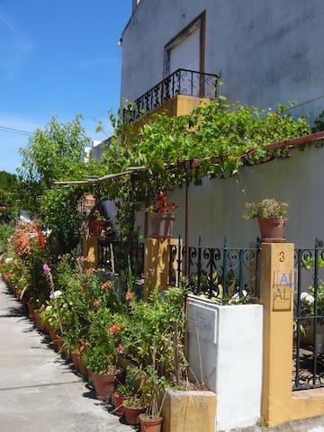 Apartamento Bela Vista - Aldeia Rural - Chamusca - Apartment