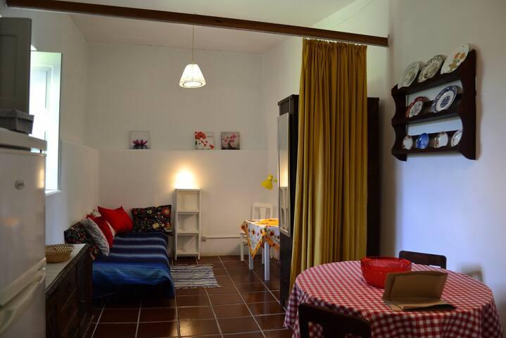 Casa da Avó Micas - Apartamento Sul Páteo