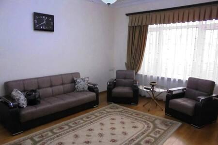 Cosy Apartment on Tumanyan str. - Yerevan - Apartment