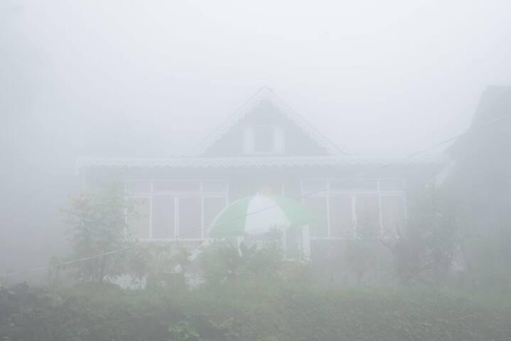 Brightside farmstay (lamahatta Darjeeling)