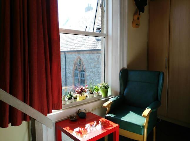 Studio Flat in Portobello - Dublin - Apartment
