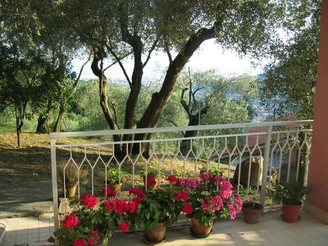 Casa Chicca, appartamento in villa vista mare