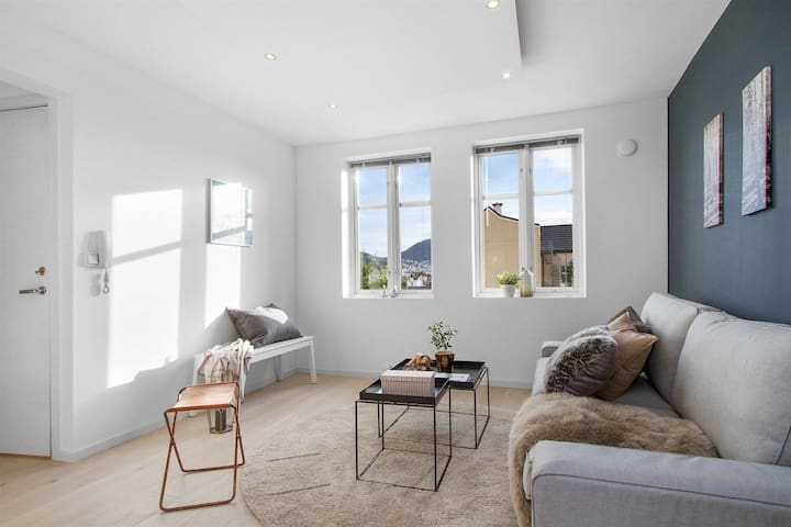 Newly renovated apartment in the heart of Bergen