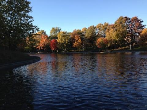 The lake in La Fontaine Park