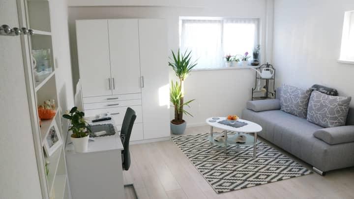 Gemütliches 1-Zimmer Apartment