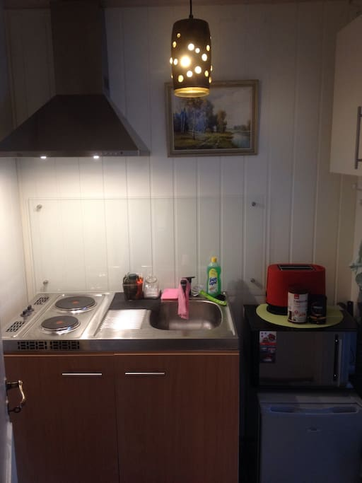 Small kitchen with everything you need. Bialetti coffee espresso can, toaster, micro, freezer, 2 coocking plates to make dinner.