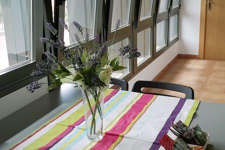 Apartamentos Iribarren II - Tudela - Apartment