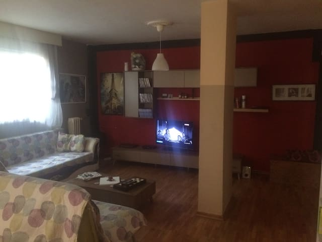 Looking for a flat mate - Ankara - House