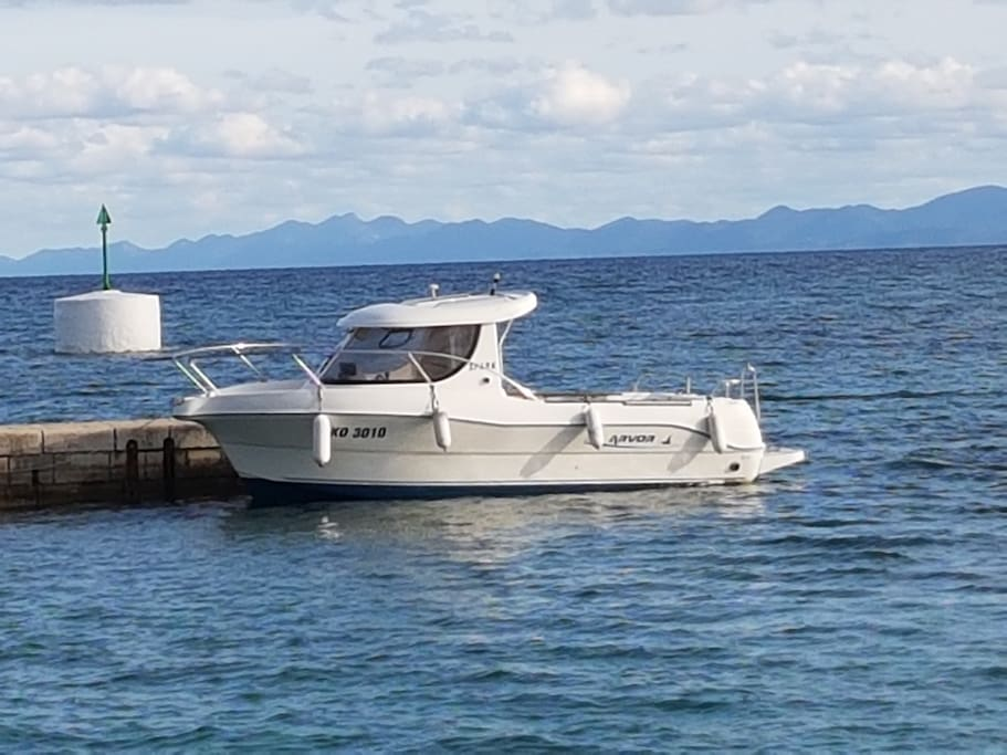 Powerboat for free excursion