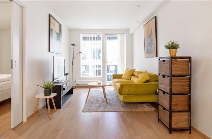 BEST LOCATION AKER BRYGGE OSLO CITY FULL APARTMENT