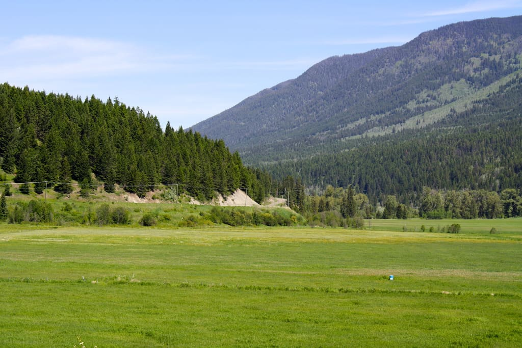 Summer view of the pastures and ski hill in the distance