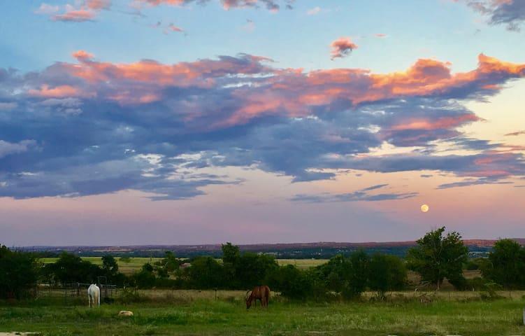 Best Farm Stay in Fredericksburg!
