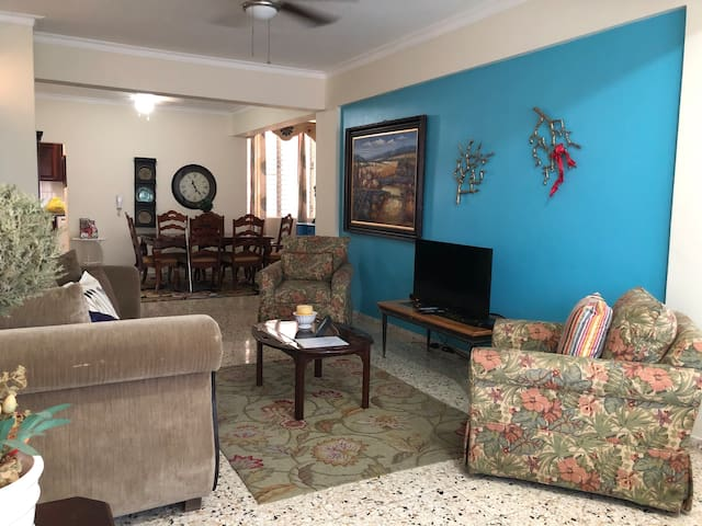 Cozy, comfortable apartment in the middle of town