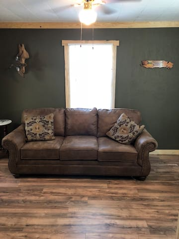 Living Room Queen Sofa Sleeper