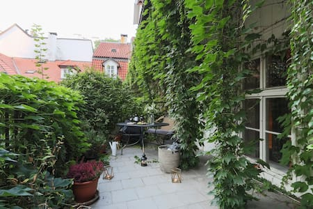 Central apartment with stunning terrace - Prag
