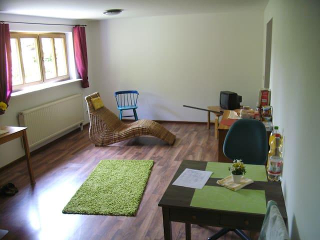 1,5 Zimmerwohnung in ruhiger Lage. - Kleinsendelbach - Apartamento