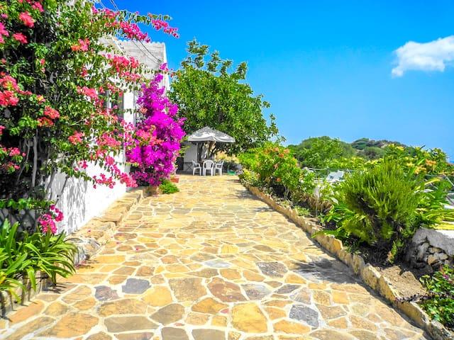 Catalunya Casas: Villa Bella for 8 guests,  5 min drive to Es Mercadal, Menorca and 6km to the beach