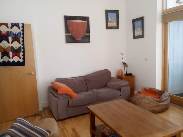 Modern sunny 3-bed house overlooking River Shannon - Athlone - Hus