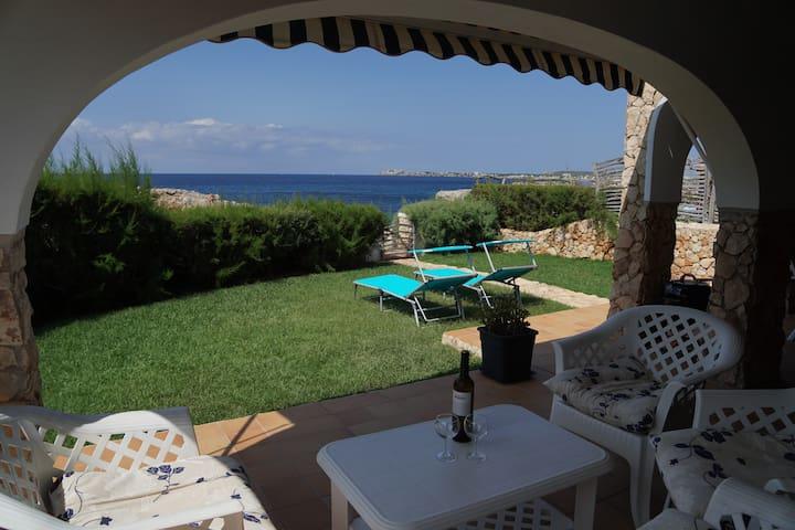 Bonavista ocean view