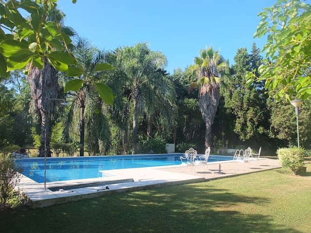 Relax In Nature - A Vegetarian's Paradise - El Pato - Hus
