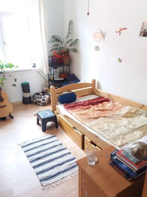 Pokoj s jednou posteli a pracovnim stolem/Room with one bed and a desk