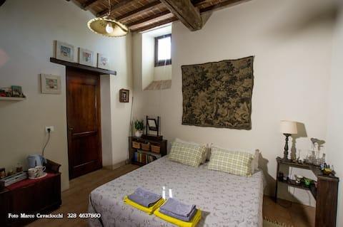 Bed & Breakfast Il Bosso di Toscana