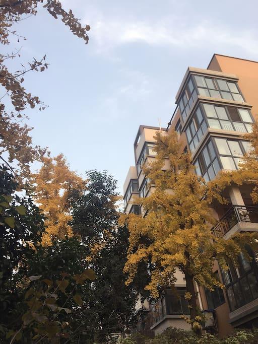 小区环境优美,是咸阳市中心附近最大的小区,交通便利。