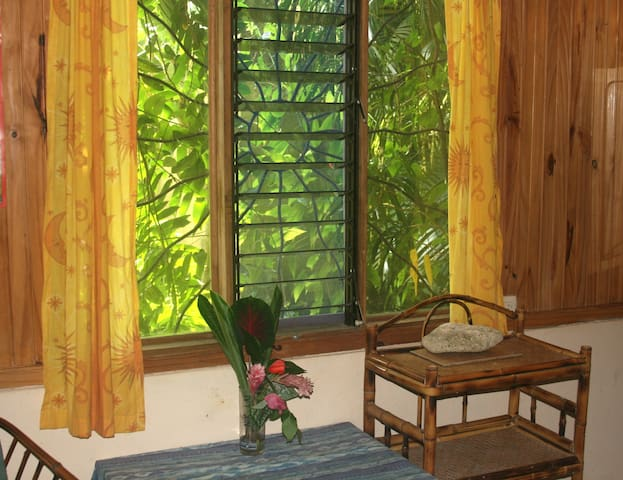Tranquil Private Apartment for Natural Activities - Uvita - Byt