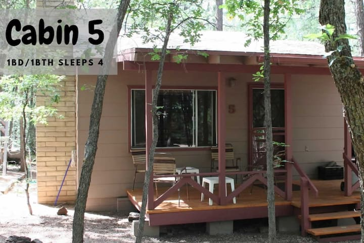 1 Bed/1 Bath Cabin in Pinetop Book Early #5