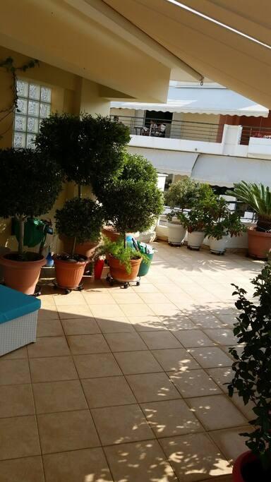 balcony view 5