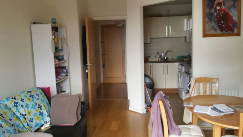 Sofabed in 1 bed apt.Owner occupied - Dublin 24