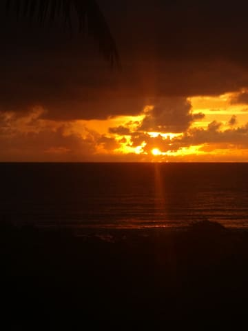 Casa pé na areia, ilha da croa Maceio