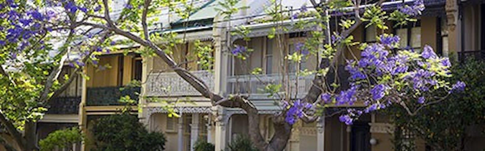 Stunning paddington converted terrace house