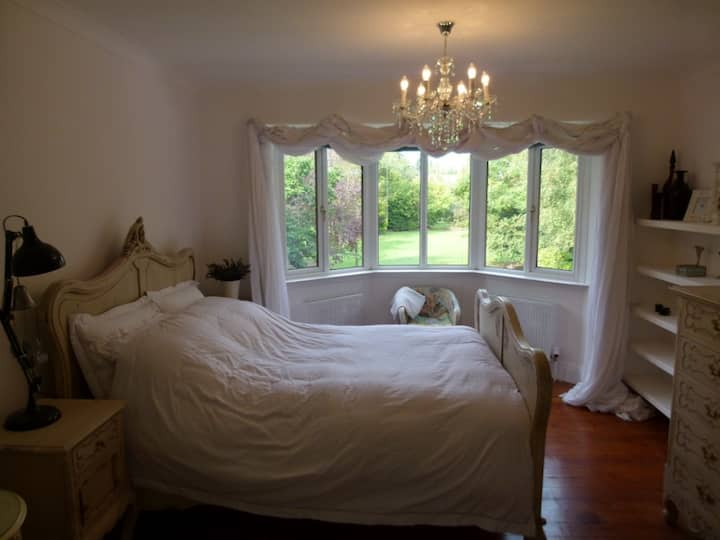Spacious room with comfy Queen bed in luxury home