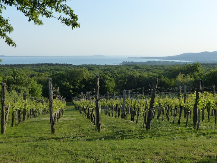 A hidden gem in the northern part of Lake Balaton