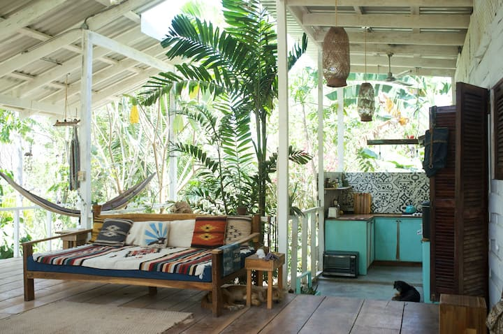 Surf and Jungle , Hip and Humble Shack