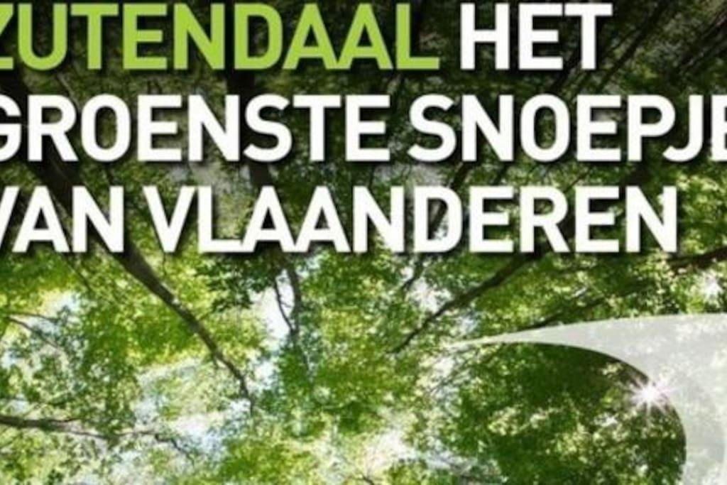 Zutendaal het groenste snoepje van Vlaanderen