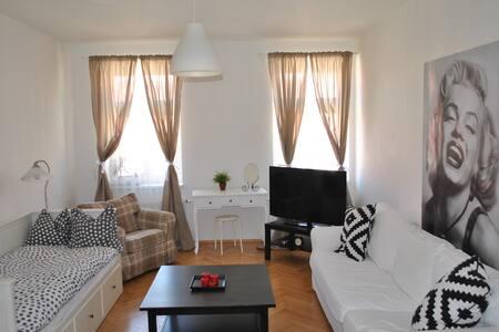 Beautiful & cozy room, city center - Prag - Wohnung