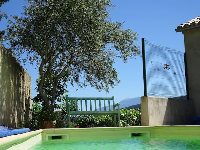 piscine avec vue Ventoux
