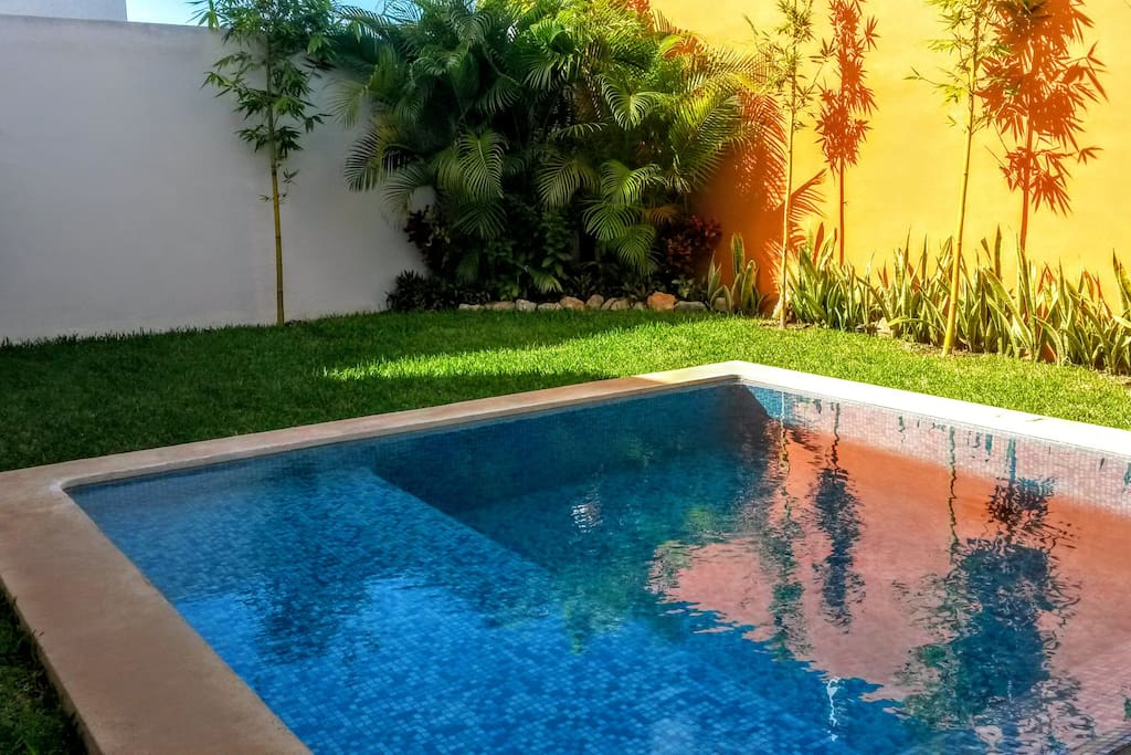 The lovely pool and garden.