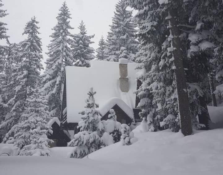Vlašić, planinska kuća PAM