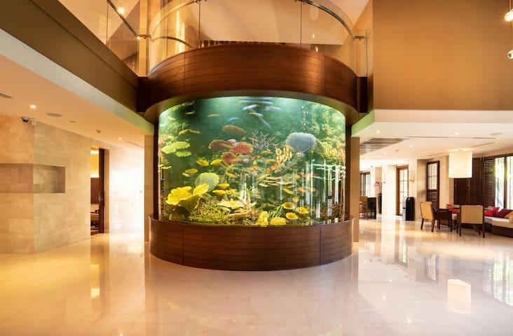 戴尔水族公馆9卧室