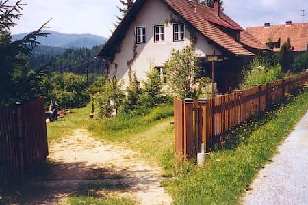 Originelles Einfamilienhaus in einem großen Garten