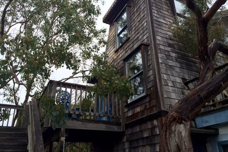 The WaterTower - Didjeridoo - Mendocino - Bed & Breakfast
