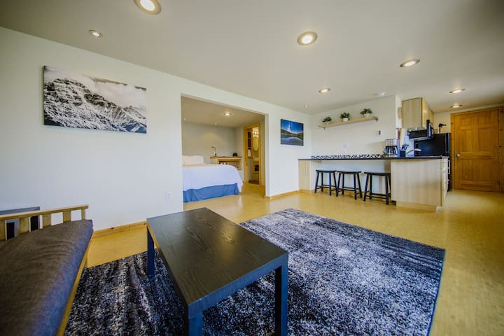 The studio is about 500 square feet and is divided into two areas, a rear sleeping area with a bathroom, and a front living space with a futon, coffee table, breakfast bar, and galley kitchen.