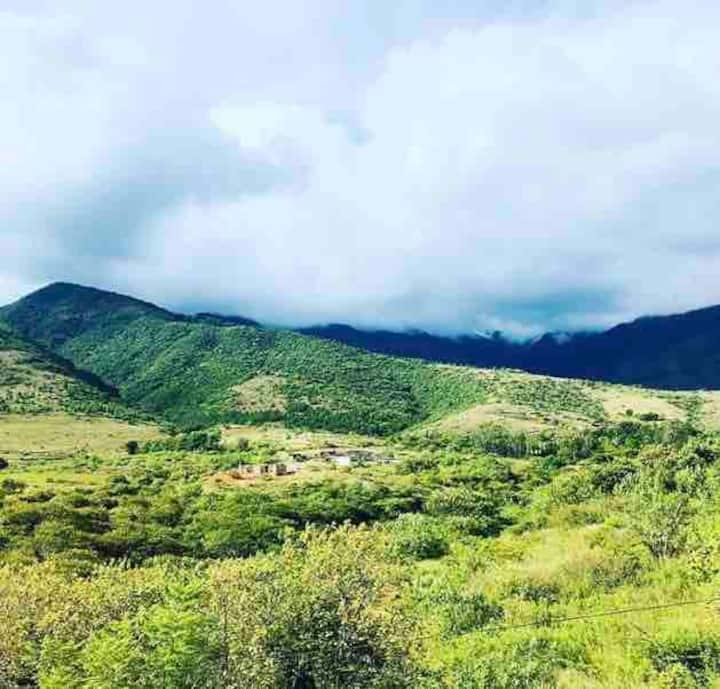 La vista Huayapam