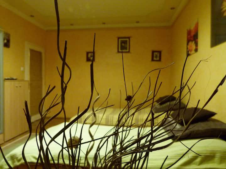 Marikó Apartman Szeged